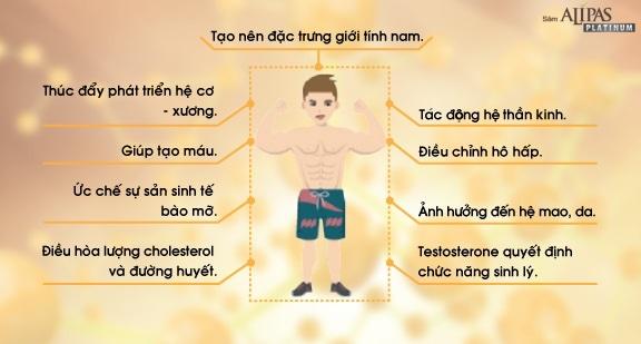 tang-testosterone